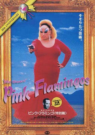 b5-flamingos